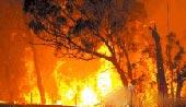 澳大利亚发生严重山火