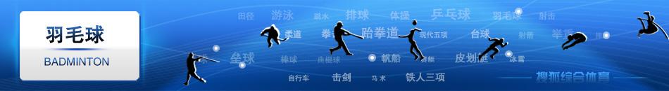 羽毛球,羽毛球比赛直播、羽毛球视频、林丹,谢杏芳,鲍春来,张宁,陶菲克