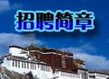"""西藏旅游""""帮帮团"""""""