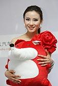 2009上海车展 全明星十佳车模 克莱斯勒 何佳仪