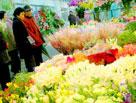 守岁和逛花市