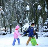 暴雪中我们如何保障自身的安全