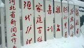 博友纪录09年大雪