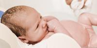 新生儿的大脑