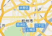 2009杭州汽车消费调查白皮书