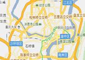 2009重庆汽车消费调查白皮书