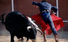 西班牙人生活习惯,西班牙人生活方式,运动生活