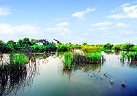 西溪湿地:天堂般的休闲驿站