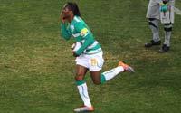南非世界杯,德罗巴