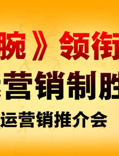 2010搜狐亚运营销推介会