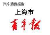 2010上海汽车消费报告