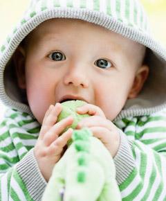 偏食宝宝的5大健康隐患