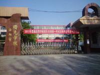 2011高考