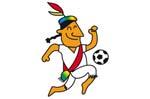 2004美洲杯