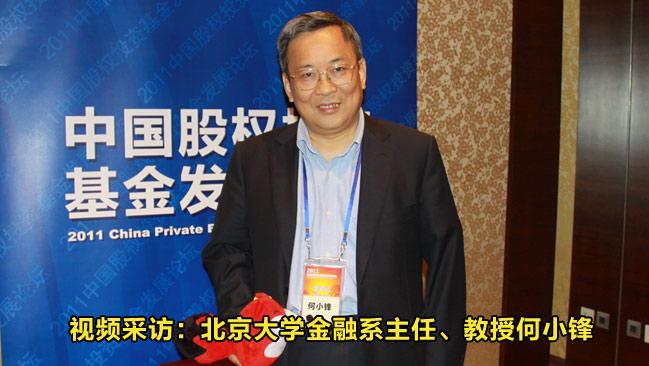 北京大学金融系主任、教授何小锋