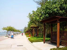 长洲西堤道 沿岸单车游