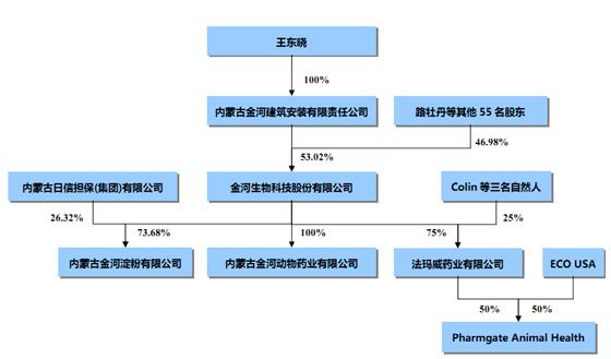金河生物外部组织结构图