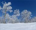 人少、专业度高的雪场:北大湖滑雪场