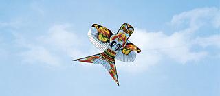 让孩子知道风筝为什么能飞上天