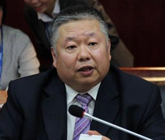 吉利汽车研究院副院长 何伟
