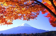 日本富士山,日本留学,日本留学条件,日本留学生,日本留学费用,日本留学考试,日本留学签证,日本留学中介,日本留学语言,日本留学中介