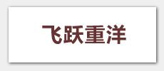飞跃重洋,年度论坛:搜狐《高朋满座》