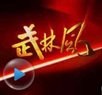 河南卫视跨年功夫盛典