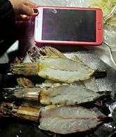 大明虾配西兰花配虾酱