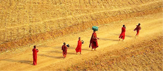 漫游缅甸仰光 瞻仰最美佛光