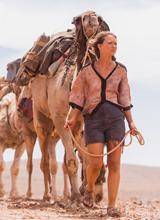 《沙漠驼影》