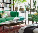 有氧起居绿色沙发把绿色留在身边