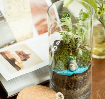 手作苔藓盆栽