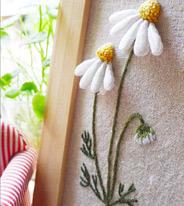 3D刺绣的小雏菊