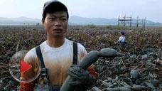 舌尖上的中国第1集:自然的馈赠