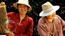 《舌尖上的中国2》片花:养蜂人