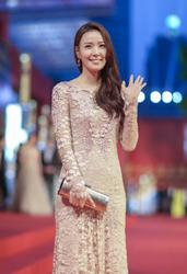 第17届上海国际电影节