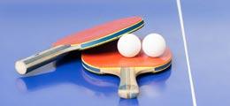 2015乒乓球世界杯