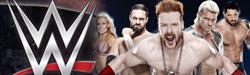 WWE摔跤秀
