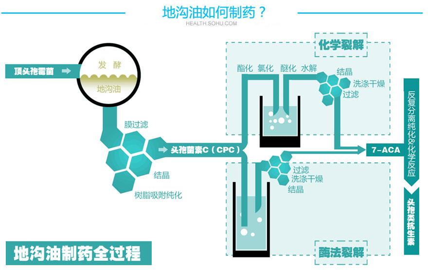 焦作健康元地沟油_公司调查:健康元涉嫌购地沟油制药-搜狐财经