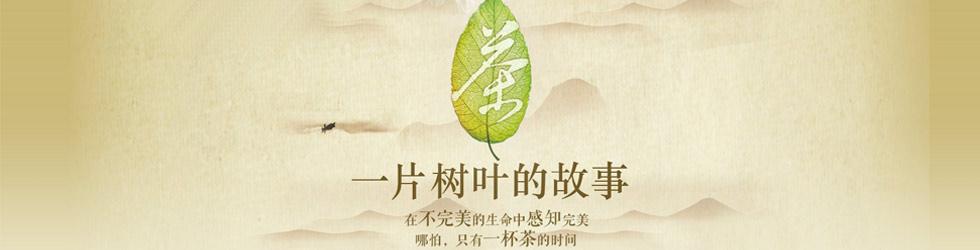 茶一片树叶的故事2_茶,一片树叶的故事-茶,一片树叶的故事在线观看 - 搜狐视频